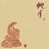 pic of chinese new year 2013  - Chinese 2013 for Year of Snake design - JPG