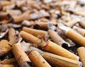 Cemetery Of Cigarettes