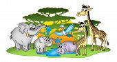 Group Of African Animals poster