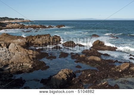 Pacific Grove-monterey Bay Seascape
