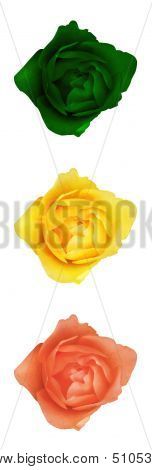 Stoplight Flower