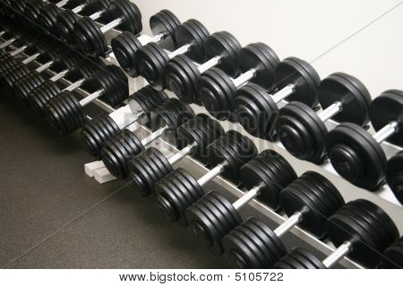 Exercise Equipment Weights
