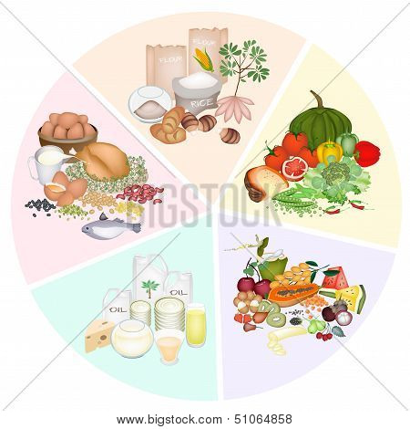 Health and Nutrition Benefits of Five Main Food Groups