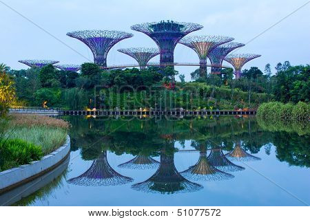 Supertree Grove At Gardens By The Bay