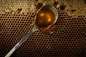 pic of honeycomb  - spoon full of honey on honeycomb background - JPG