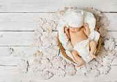 pic of wooden basket  - Newborn baby sleeping in basket on leaves over white wooden background - JPG