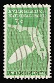 Everglades 1947