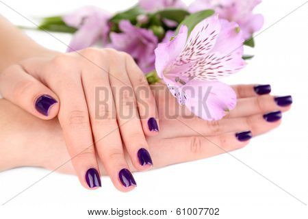 Beautiful woman hands with flowers isolated on white