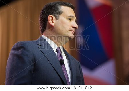 NATIONAL HARBOR, MD - MARCH 6, 2014: Senator Ted Cruz (R-TX) speaks at the Conservative Political Action Conference (CPAC).