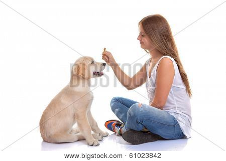 young woman holding labrador pet dog