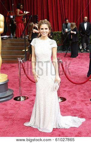 LOS ANGELES - MAR 2:: Maria Menounos  at the 86th Annual Academy Awards at Hollywood & Highland Center on March 2, 2014 in Los Angeles, California