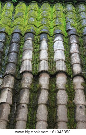Old Tiled Roof