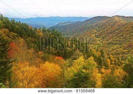 Colorful Fall day in the Smoky Mountains