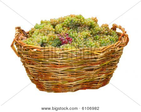 Green Grape In Wood Basket Isolated Over White
