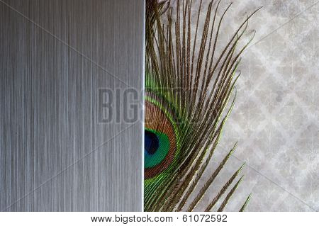 Brushed metal peacock feather abstract