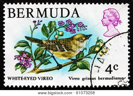 Postage Stamp Bermuda 1978 White-eyed Vireo, Songbird