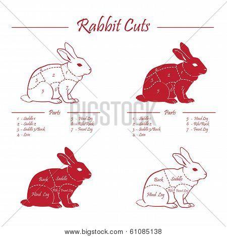 Rabbit Meat Cuts Scheme