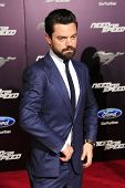 LOS ANGELES - MAR 6: Dominic Cooper at the premiere of DreamWorks Pictures' 'Need For Speed' at TCL