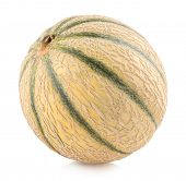 picture of melon  - cantaloupe melon - JPG
