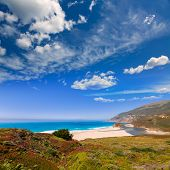 California beach in Big Sur in Monterey Pacific Highway along State Route 1 US