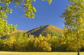 foto of cade  - Great Smoky Mountains National Park is famous for Cades Cove - JPG