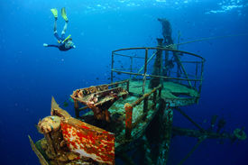 picture of bottomless  - Free diver exploring the ship wreck in tropical clear sea - JPG