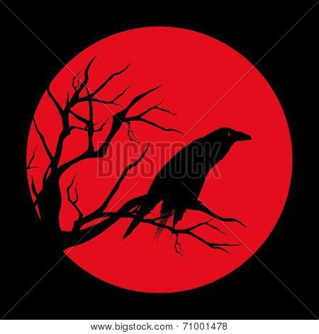 Red Moon Raven