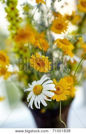 Wild Mountain Flowers In A Vase