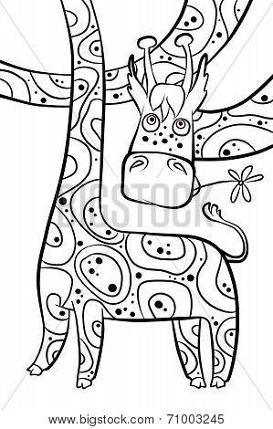 Funny Longnecked Giraffe