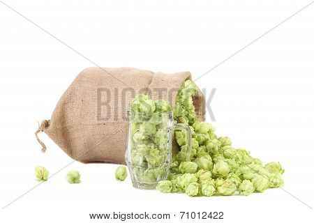 Mug and bag with hop.