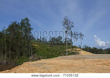 KUCHING, MALAYSIA - APRIL 27 2014: Deforestation. Photo of tropical rainforest in Borneo being destroyed to make way for oil palm plantation.