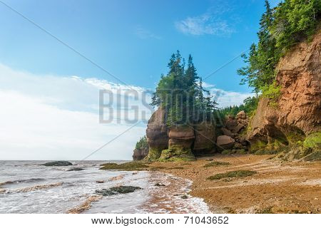 Famous Hopewell Rocks Flowerpot Formations At Low Tide