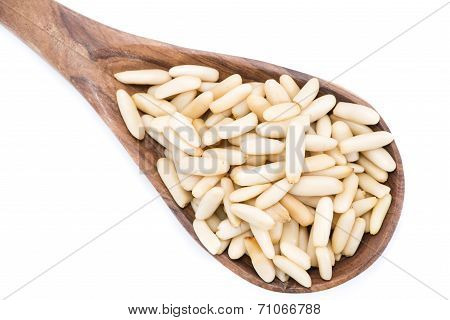 Pine Nuts Isolated On White