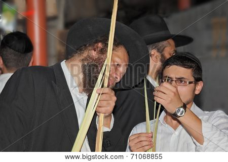 BNEY-BRAK, ISRAEL - SEPTEMBER 17, 2013:  Grand Bazaar on the eve of the Jewish holiday. Middle-aged man with a beard chooses ritual plant - myrtle. Next to him stands a teenage boy