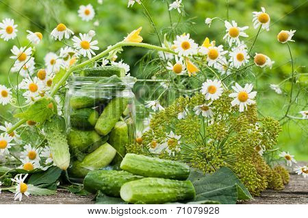 Canning Cucumbers At Home