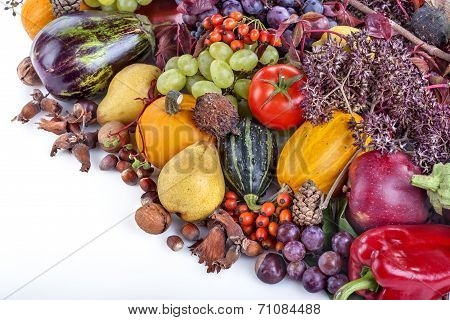 Autumn fruits nuts and vegetables