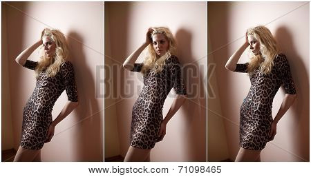 Attractive sexy blonde in animal print tight fit short dress posing provocatively indoor