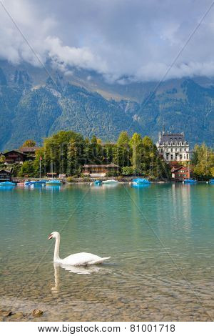 alpine Lake Brienz