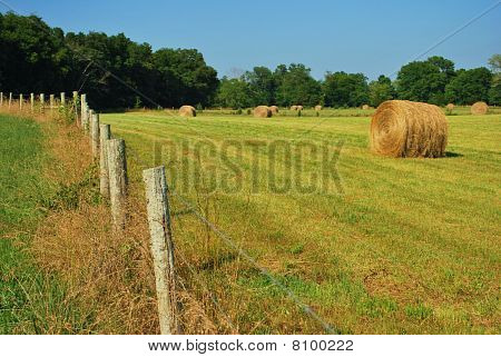 Bales of hay and a fence