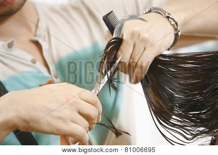 Woman Haircut The Hair In Salon