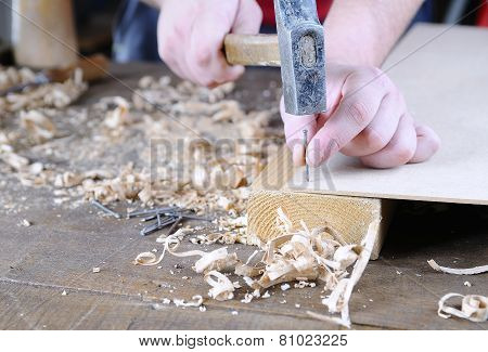 Carpenter Working.