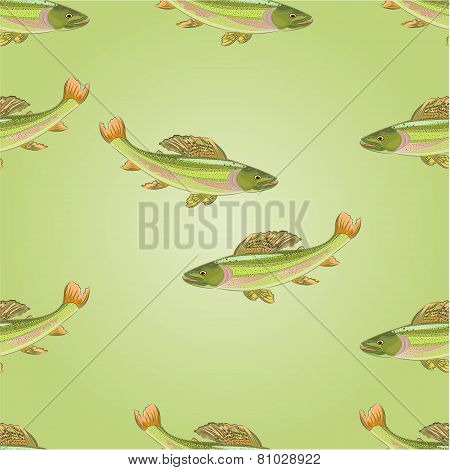 Seamless Texture Salmon Grayling Vector