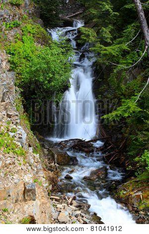Beautiful water falls in Mount Rainier national park