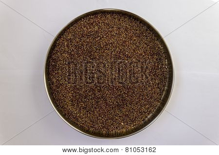 A stainless steel plate with finger millet kept for drying under sunlight