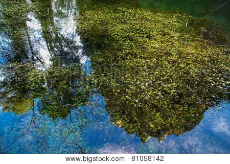 Reflections In The Lake At Monasterio De Piedra, Zaragoza, Aragon, Spain