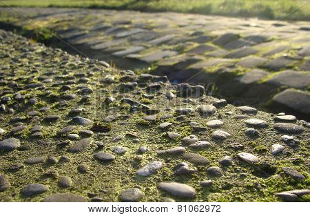 Old Cobble Stone Road And Pebble With Moss And Evening Low Sun