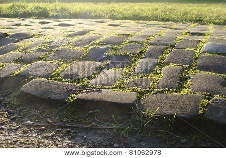Old Cobble Stone Road With Moss Grass And Evening Low Sun