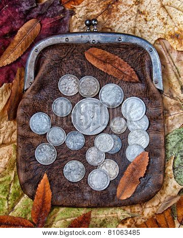 Purse with silver coins