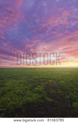 Open field of grass with beautiful sunset above in sky