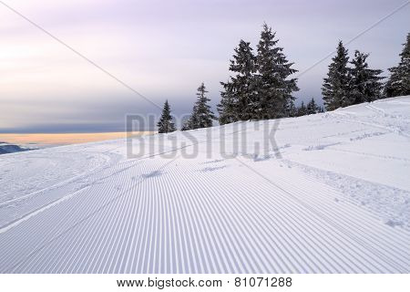 Snowmobile Tracks On The Hillside